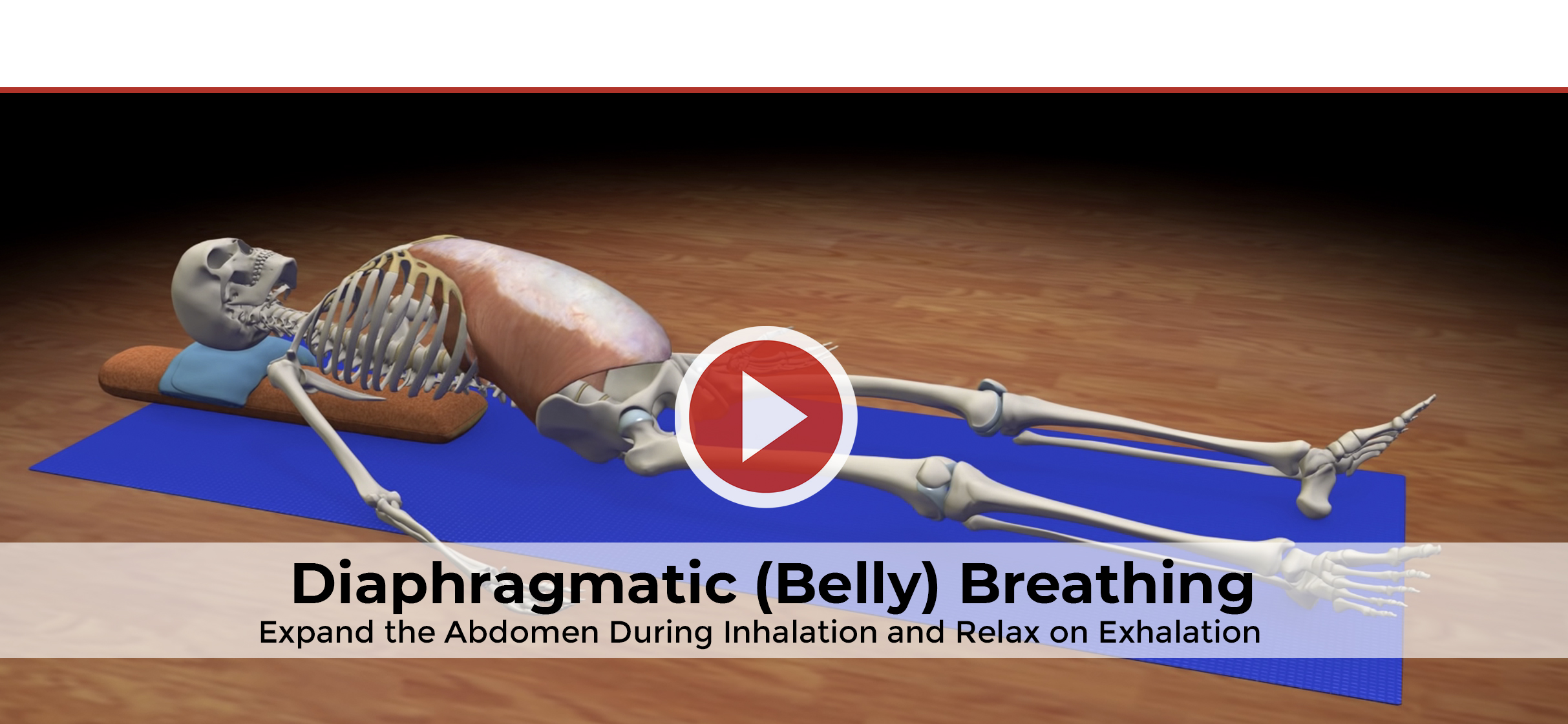 Bhanda Diaphragmatic (Belly) Breathing
